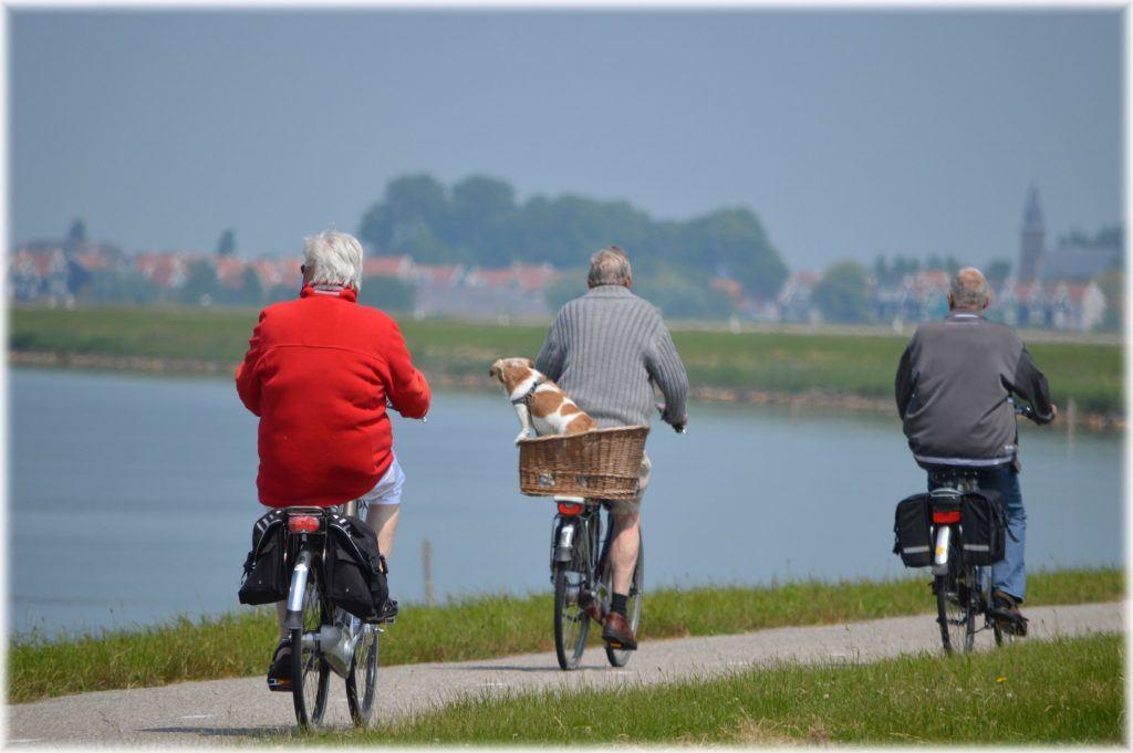ouderen aan het fietsen langs het water, 1 fietser heeft een hondje in een mand achter op de fiets